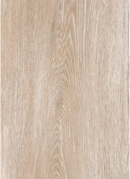 FORESTA MAPLE